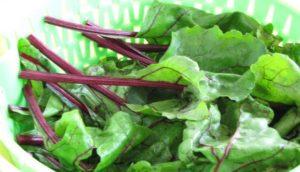 Beetroot leaves